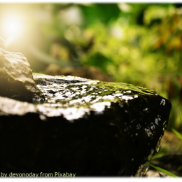 Sunday, March 15, 2020 Thirst – Living Water